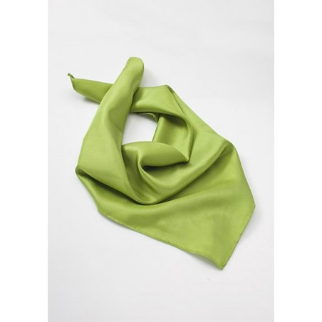 Apple Green Womens Scarf