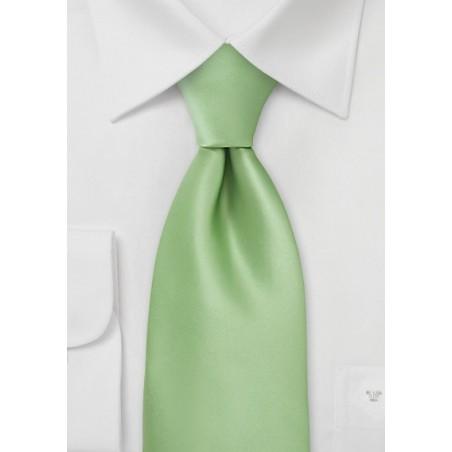 Boys Necktie in Light Key Lime