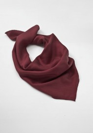 Womens Scarf in Chestnut Brown