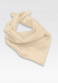 Elegant Cream Colored Neck Scarf