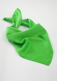 Women's Scarf in Kelly Green