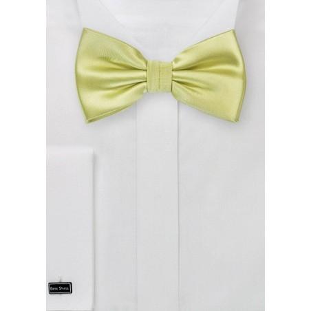 Light Pear Green Bow Tie