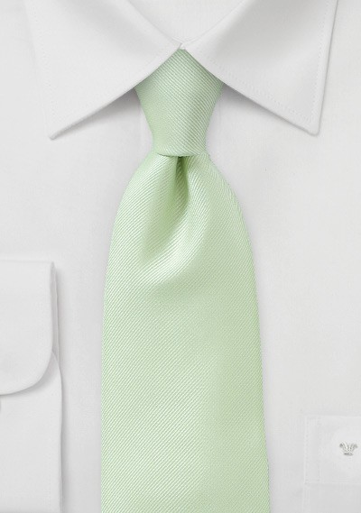 Extra Long Tie in Light Green
