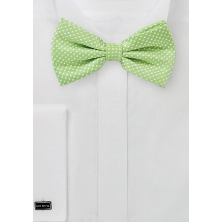 Pin Dot Bow Tie in Spring Green