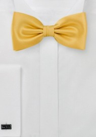 Amber Yellow Mens Bow Tie