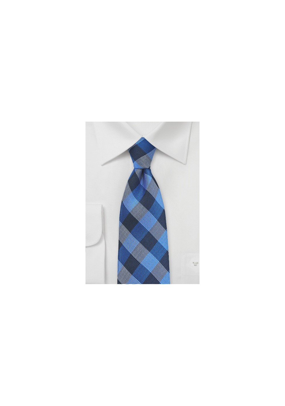 Horizon Blue and Navy Gingham Tie