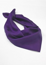 Regency Purple Womens Scarf