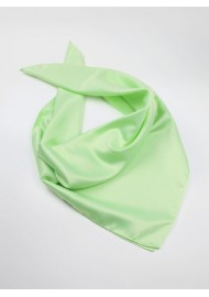 Light Mint Colored Womens Scarf