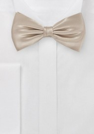Kid and Toddler Bow Tie in...