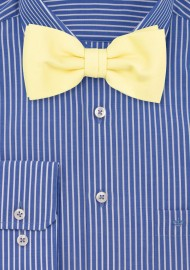 Lemon Chiffon Bow Tie by Puccini