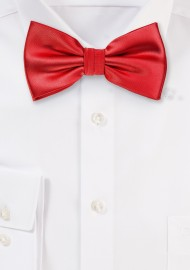 Bow Tie in Bright Red Color