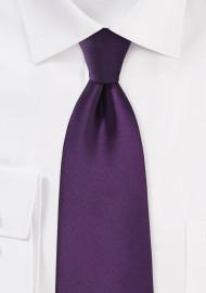 Solid Eggplant Purple Tie in XL