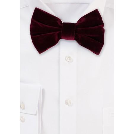 Large Butterfly Velvet Bow Tie in Burgundy Red