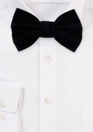 Large Butterfly Velvet Bow Tie in Black