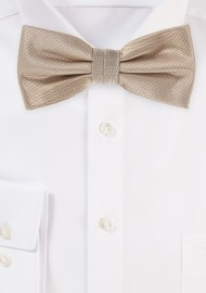 Formal Golden Mens Bow Tie
