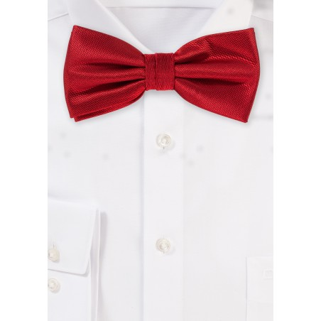 Elegant Dress Bow Tie in Cherry