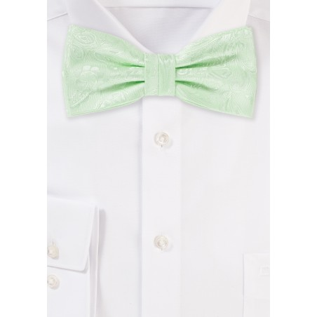 Pastel Green Paisley Bow Tie
