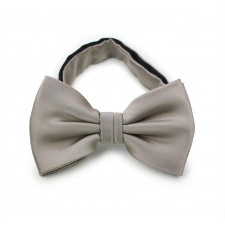 Elegant Silver Gray Bow Tie