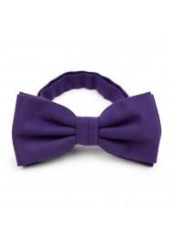 Grape Purple Bow Tie in Matte finish