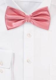 Tupip Color Bow Tie