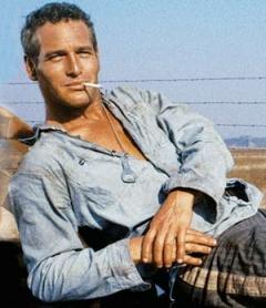 b9e8e6f08d3 Dressing Like Fashion Icon Paul Newman. paul-newman-fashion-tips  coolhandluke-paul-newman-style