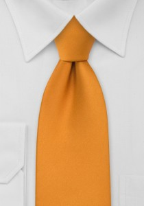 Amber Orange Tie for Kids