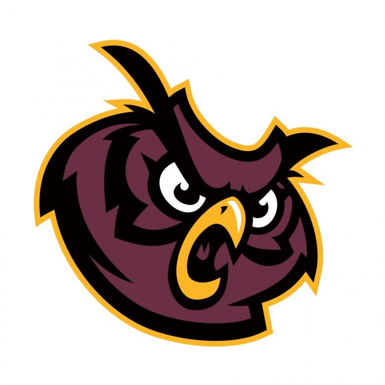 High-School-Logo-Mascot-ties