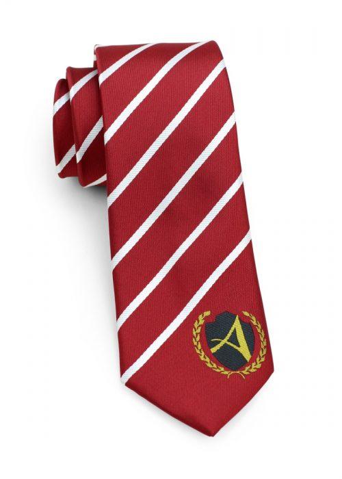 custom logo boys school neckties