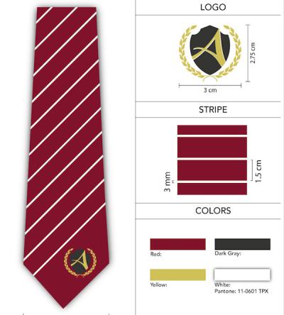 Custom Logo School Neckties