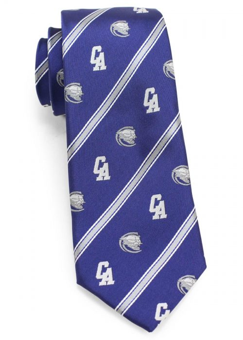 Custom Woven Necktie with Logo and Mascot for School
