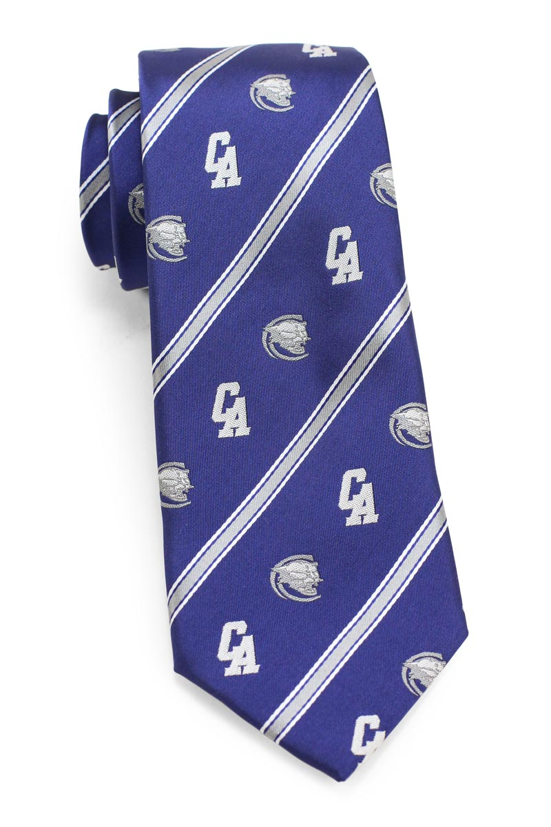 custom woven striped tie with logos