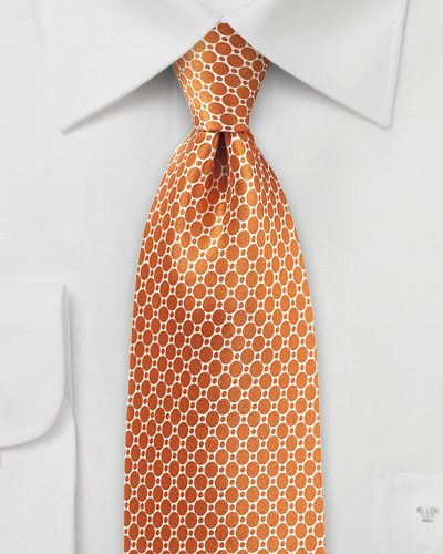 Satin Silk Designer Tie in Burnt Orange