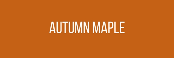 Menswear Color Of The Month - Autumn Maple Orange