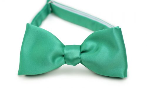 Gallery Green Self Tie Bow Tie