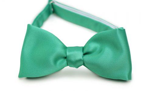 Gallery Green Self Tie Bow Tie