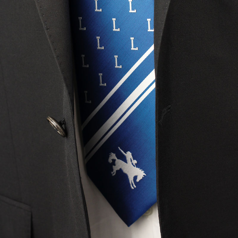 custom mascot school neckties